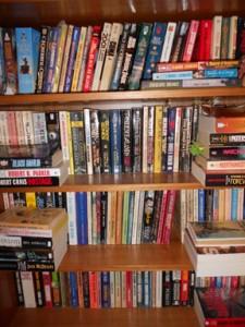 Lynette M. Burrows, author; Lynette M. Burrows, science fiction author; Lynette M. Burrows, action-adventure science fiction